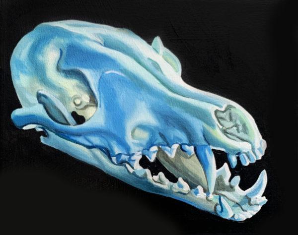 Blue Fox Skull